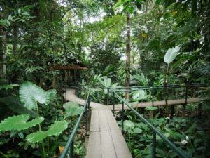 Thaïlande-Khao Sok-Riverside Cottage