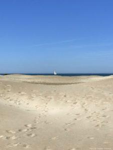 plage espiguette