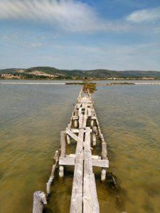 Frontignan étangs