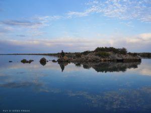 Frontignan étang d'Ingril