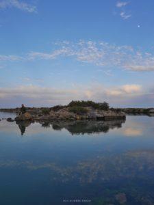Frontignan pêche sur étang d'Ingril