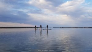 tikicenter-paddle